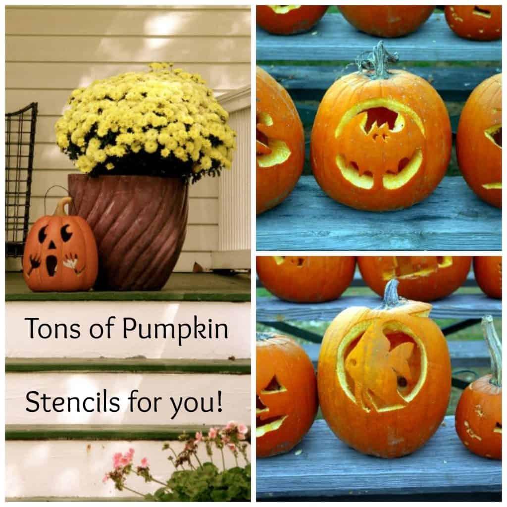 pumpkin collage