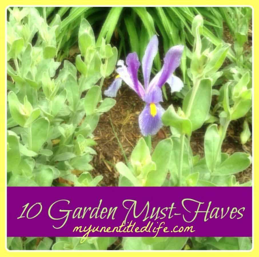 10 Garden 1