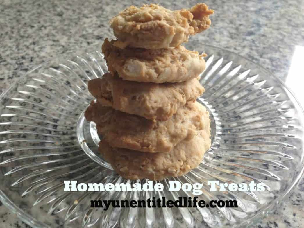 dog treats 1