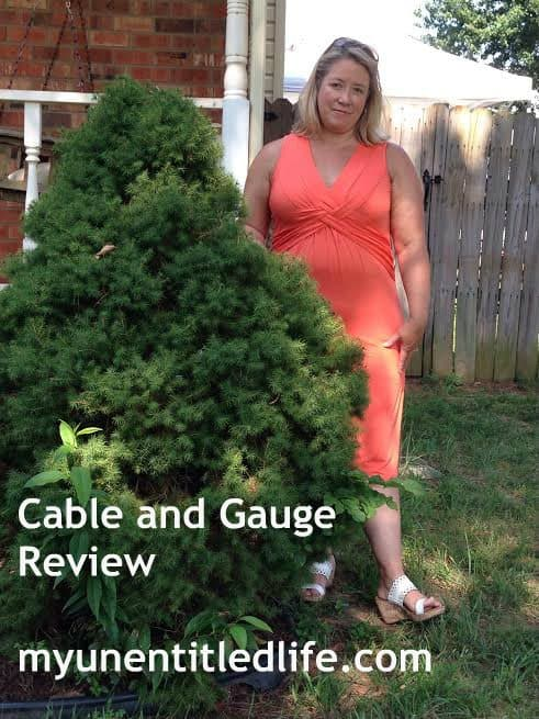 cable and gauge review