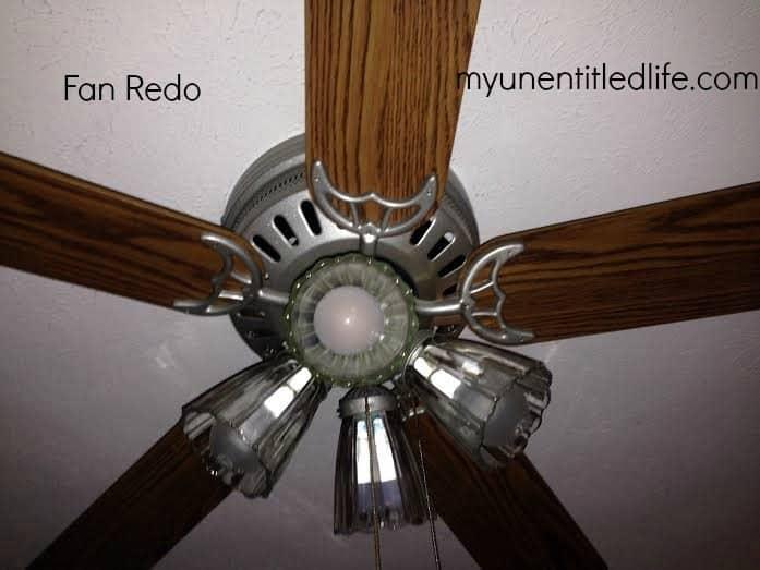 fan redone 1