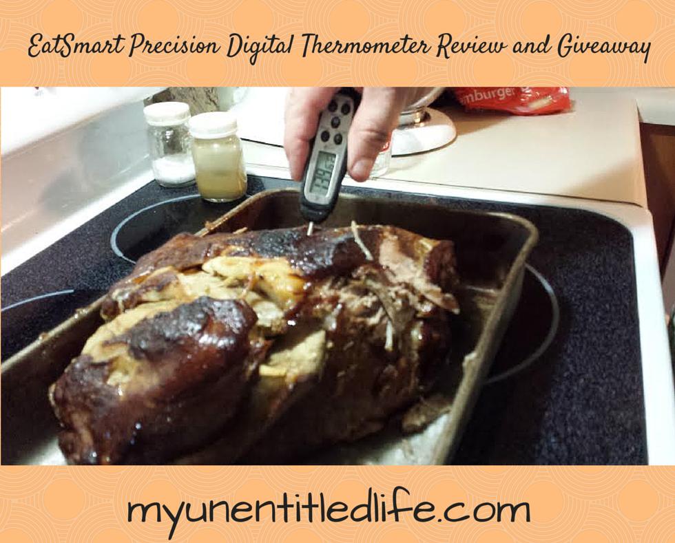 EatSmart Precision Digital Thermometer
