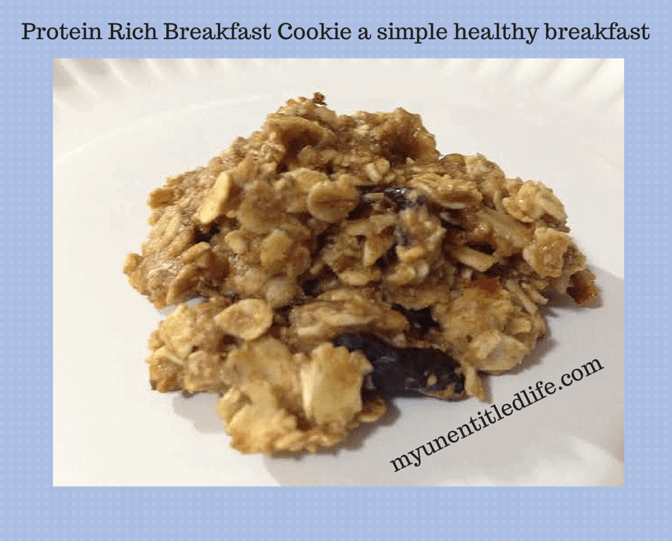 protein rich breakfast cookie