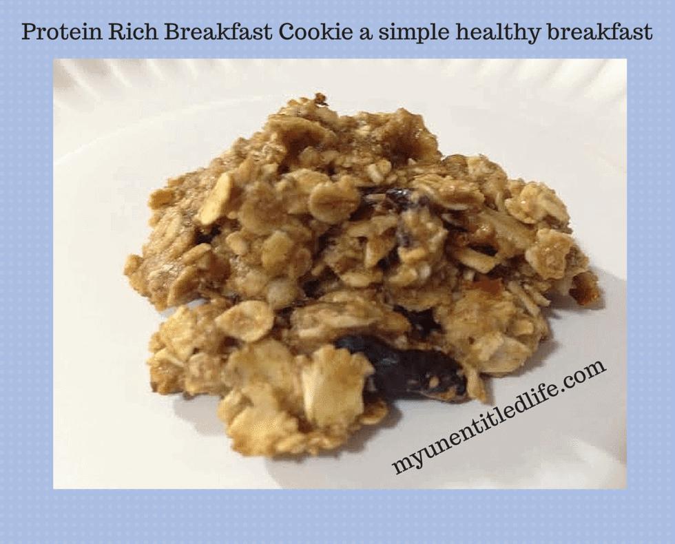 protein rich breakfast cookie