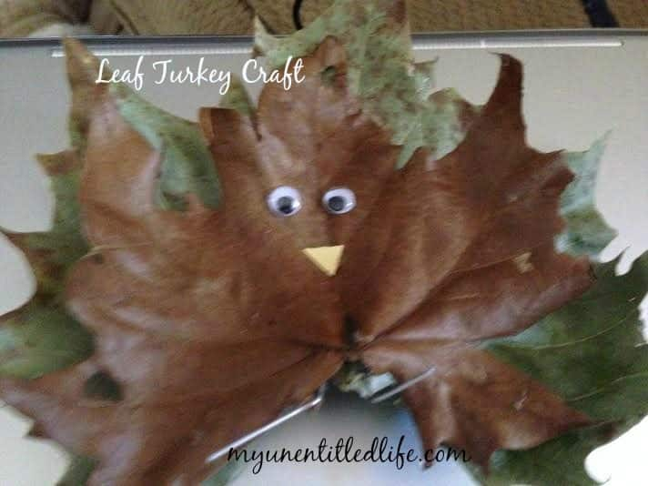 leaf turkey 1