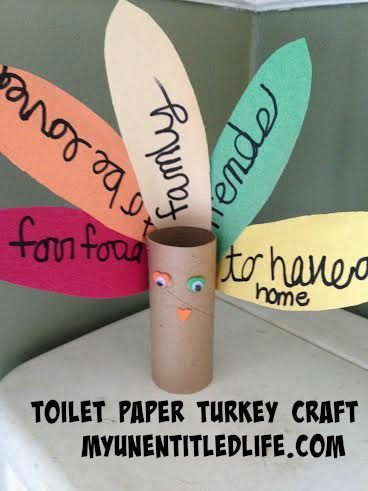 toilet paper turkey 3