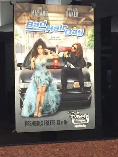 bad hair day poster