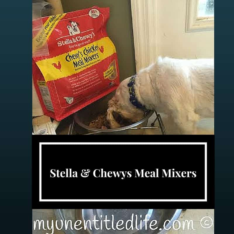 stella and chewys meal mixers