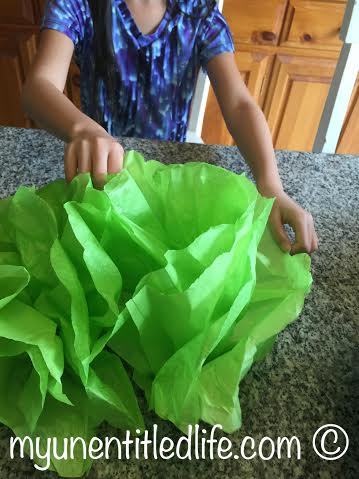 fluff up the tissue paper flowers