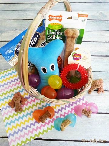 diy dog easter basket
