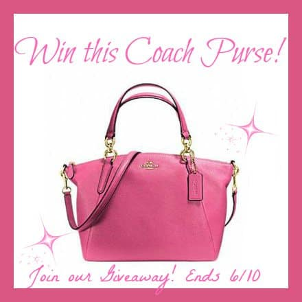 coach purse giveaway (2)