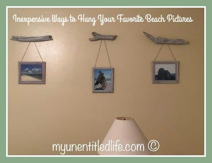 driftwood beach pictures