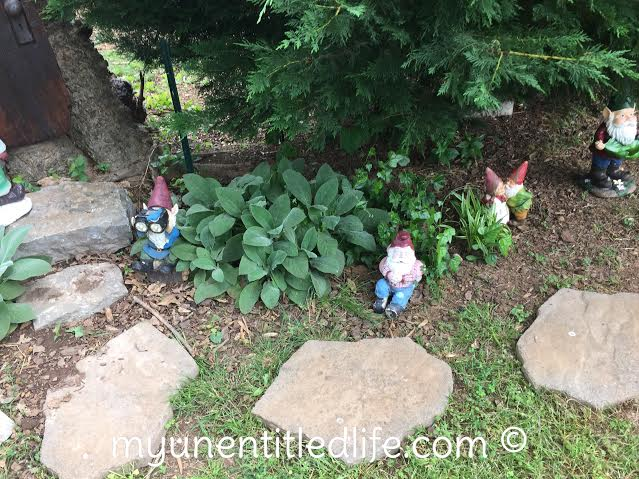 how to have a gnome town in your back yard