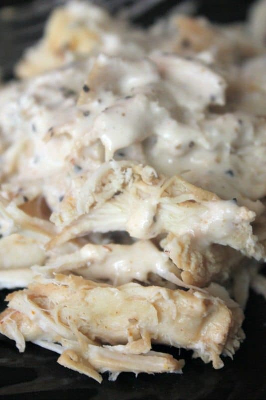 crock pot white sauce pulled chicken