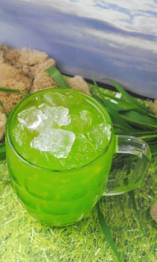 bulbasaur fruit punch recipe