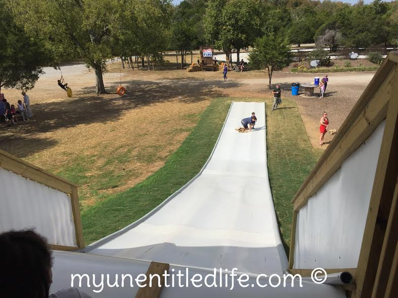 large-slides-lucky-ladd-farm