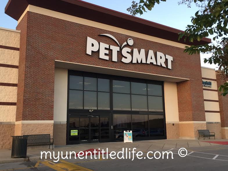 petsmart-wellness-dogfood