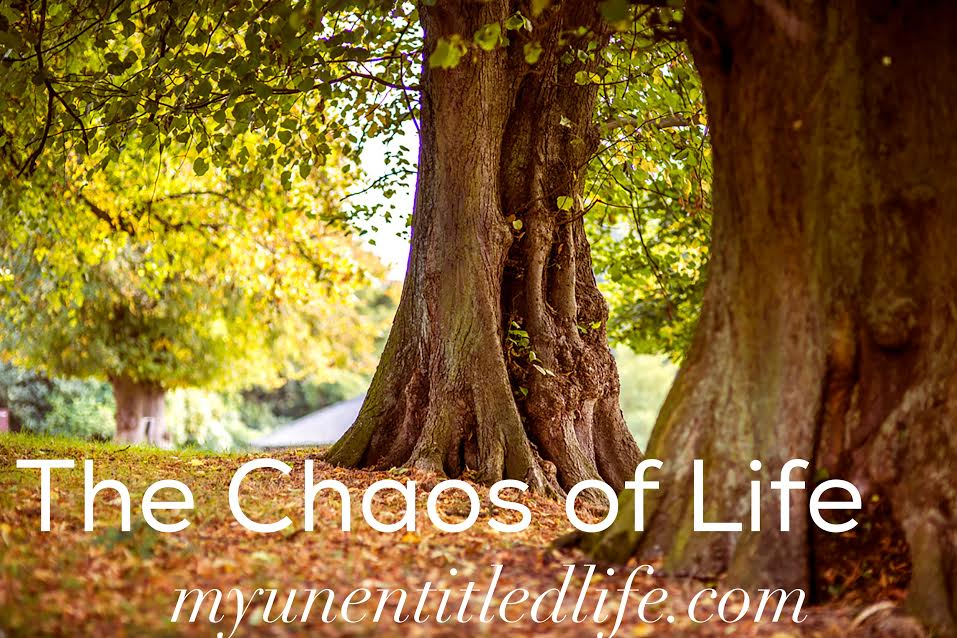the chaos of life