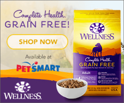 wellness-complete-dogfood